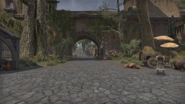 TESO-Morrowind-19